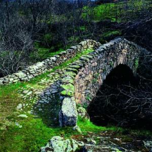 puentecanencia02cf8