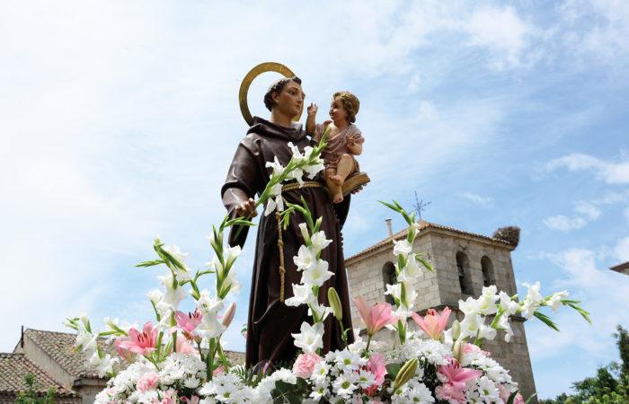 Fiestas de San Antonio en Collado Villalba